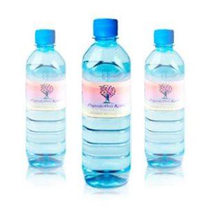 Вода «Родниковый Край, Элитная»