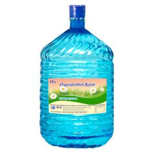 Вода «Природная» в одноразовой ПЭТ бутыли